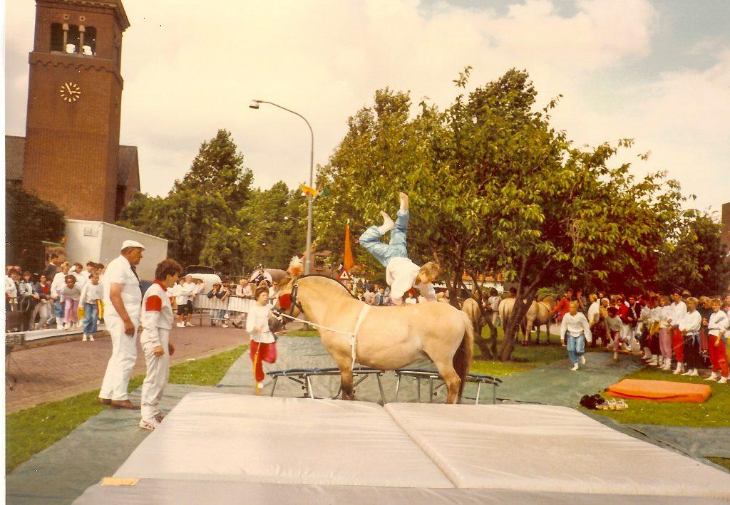 1e demo van TPT met paarden in Overasselt