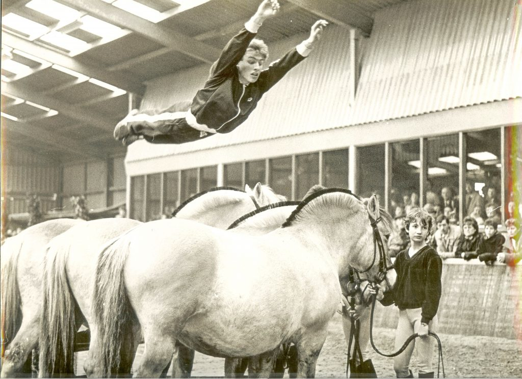 Gert Jan vd Berg over 3 paarden